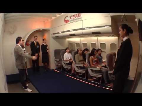COMISSÁRIO DE VOO E AEROMOÇA CURSO NO SITE ABAIXO 8 de YouTube · Duração:  6 minutos 11 segundos