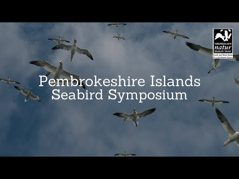 Prof  Ben Hatchwell -- Seabirds, biology, monitoring and Wales