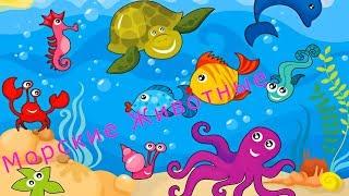 Морские Животные Для Детей Рыбы Черепахи Лягушки Развивающее и обучающие видео Лучшее