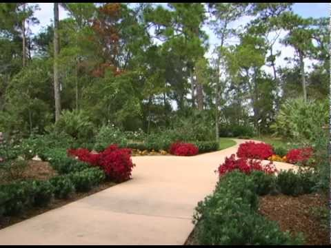 hqdefault - Port St Lucie Botanical Gardens Jazz