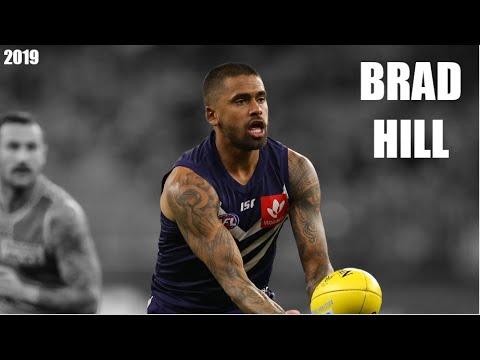 Brad Hill 2019 Highlight Reel