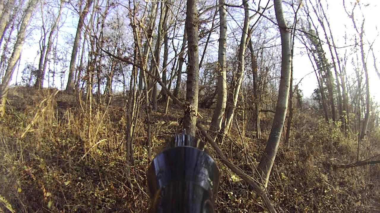 chevreuil dans la chasse pilote 54