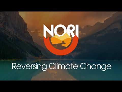 Reversing Climate Change Episode 8: Aldyen Donnelly, Director of Carbon Economics for Nori