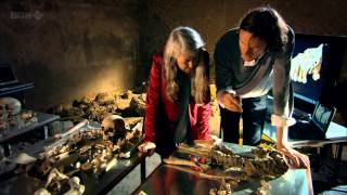 Pompeii - Life and Death in a Roman Town ( Mary Beard )