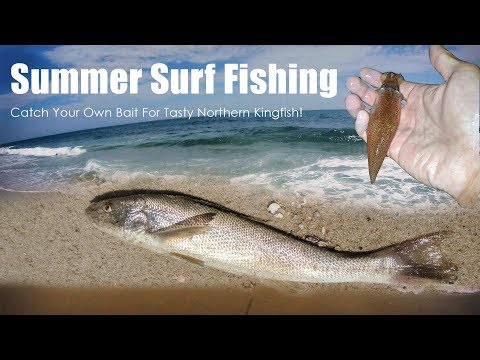 Summer Surf Fishing - Northern Kingfish (Whiting , KingCroacker)