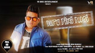 RAJU PUNJABI | DAARU PINI PADGI | NEW DJ SONG (FULL AUDIO) VR BROS ENT