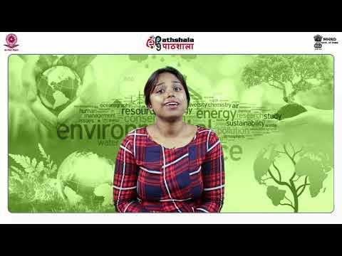 Hazardous waste: Treatment and disposal