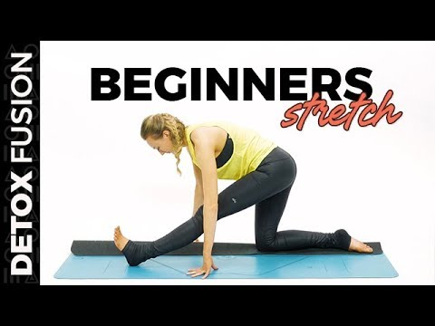 detox yoga fusion day 2 beginner total body stretch 30