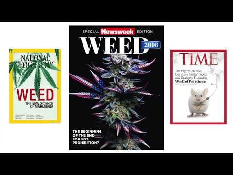 Introducing The Australian Medicinal Cannabis Observatory - Associate Professor David Caldicott