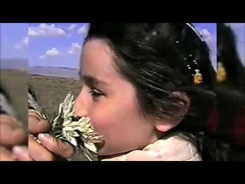 Старое кино: Городище Навекат, Красная Речка. Март 1997