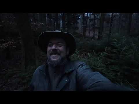 Survival Baumwissen # 6 - Tanne