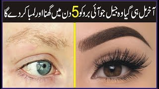 How To Make Eyebrows Thicker And Long Naturally At Home   Grow Eyebrows Fast