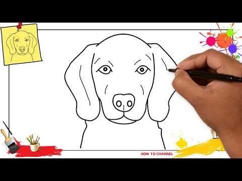 how-to-draw-a-dog-face-(head)-3-easy-&-slowly-step-by-step-for-kids-and-beginners
