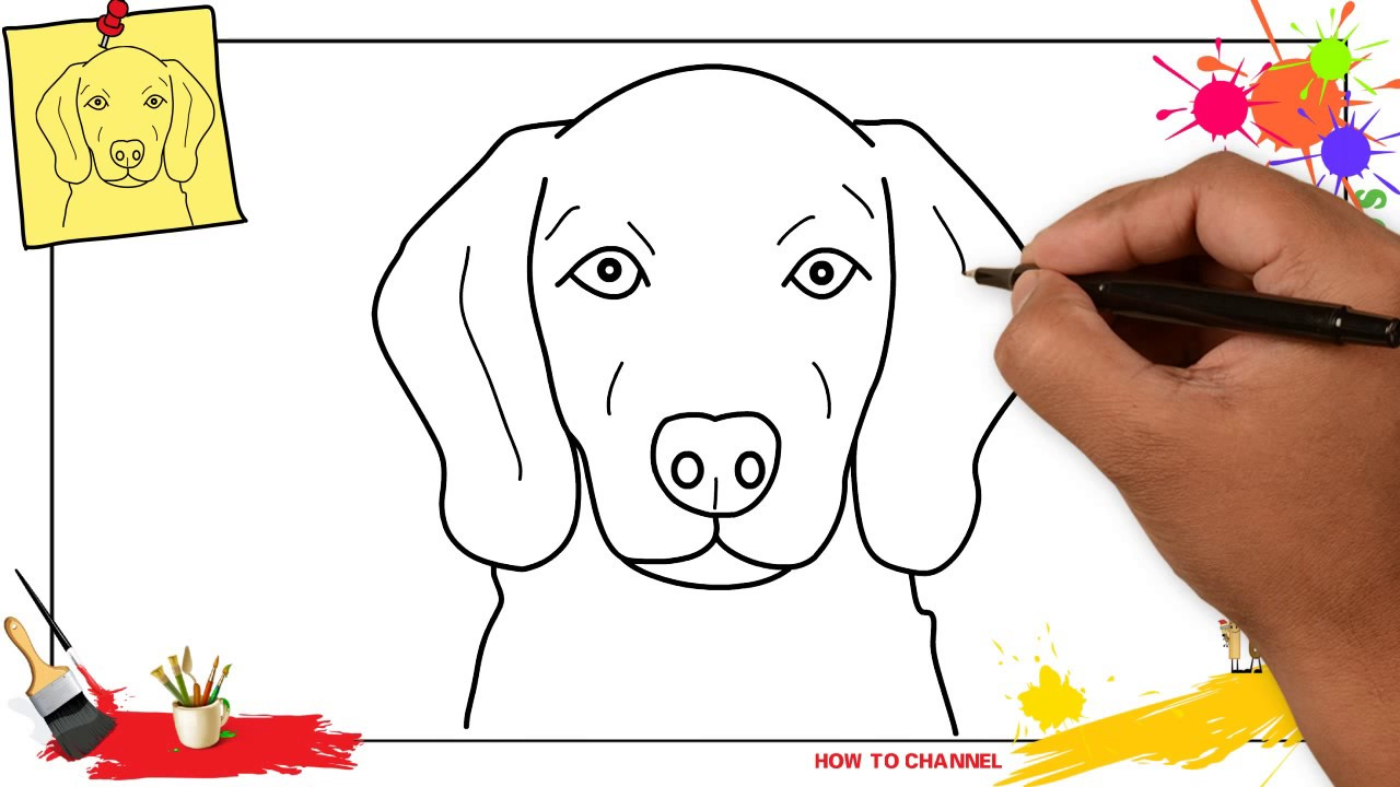 How to draw a dog face (head) 3 EASY & SLOWLY step by step ...