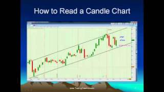 Stock Chart Types - Stock Option Trading Coach for Beginners