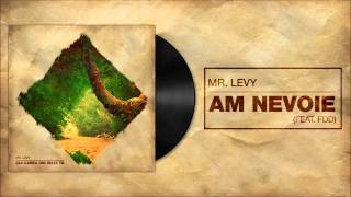 Mr.Levy feat. FDD - Am Nevoie