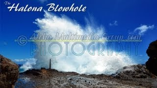 Halona Blowhole Up Close Best Geysers