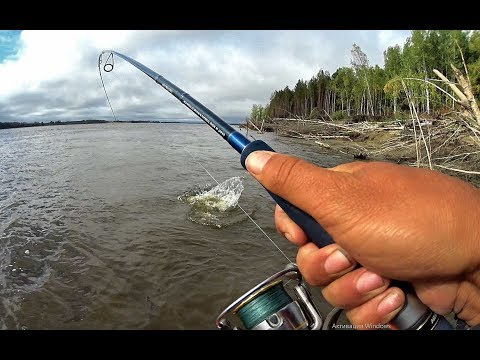 КРОКОДИЛЫ 3, 4 , 6, 8, 10 кг НА КАЖДОМ ЗАБРОСЕ!!Трофейная рыбалка мечты!!  не астрахань.