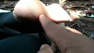 Haallooo teman teman semua,video kali ini saya berbagi tentang cara mengobati ikan cupang yang terke.