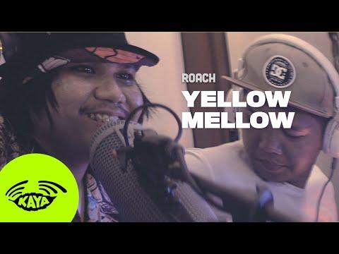 "Roach - ""Yellow Mellow"" by Ocean Alley (Cover w/ Lyrics) - Kaya Sesh"