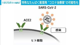 新型コロナ治療に光 ウイルス侵入防ぐ物質を開発(2020年11月19日) - YouTube