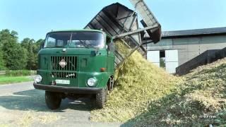 DDR Landmaschinen IFA W 50 LAZ in der Ma...