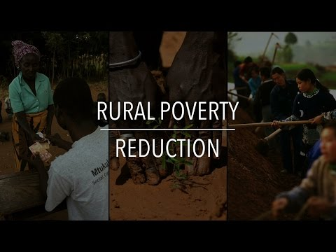 FAO Policy Series: Rural Poverty Reduction
