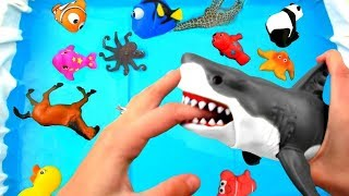 Wild Zoo Animals Toys Baby Mom Learn Animals Names Educational Shark Toys #1