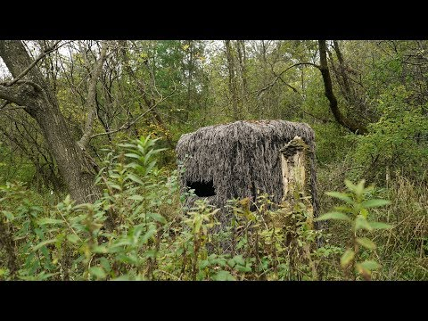 Deer Blind Bowhunting Setups