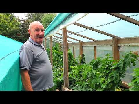 The Growers Diaries: On Film - Joe Atherton, Organic Giant Vegetables [Season 1, July]