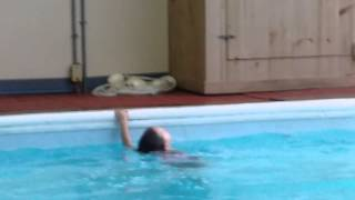 Swimming at the country inn