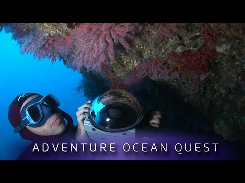 ► Adventure Ocean Quest (Full Film)