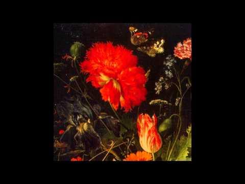 Franz Joseph Haydn Divertimenti for Wind 1/4