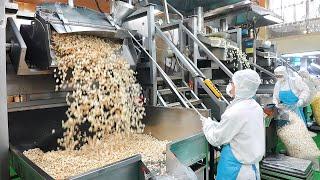 국내 팝콘 95%를 만드는 공장? 압도적인 대량생산으로…