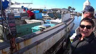 Покупаем рыбу с борта у рыбаков. Сегодняшний улов - палтус и лосось - совершенно дикие