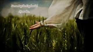 De Meises - Dengarlah Bintang Hatiku (Lyrics)