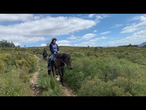 Horseback Riding in Alcaria, Portugal