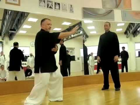 Tai Chi Chuan lesson of application principles with Sifu Paolo Bolaffio