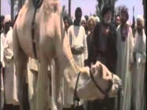 Tala Al Badru Alayna - طلع البدر علينا - Urdu Naat By Minhaj Naat Council - Minhaj Ul Quran Pakistan