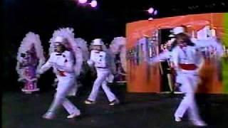 1986 Hegeman String Band - Roar 20