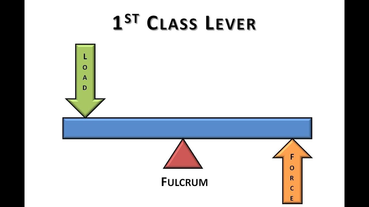 Diagram Of First Class Lever Block And Schematic Diagrams