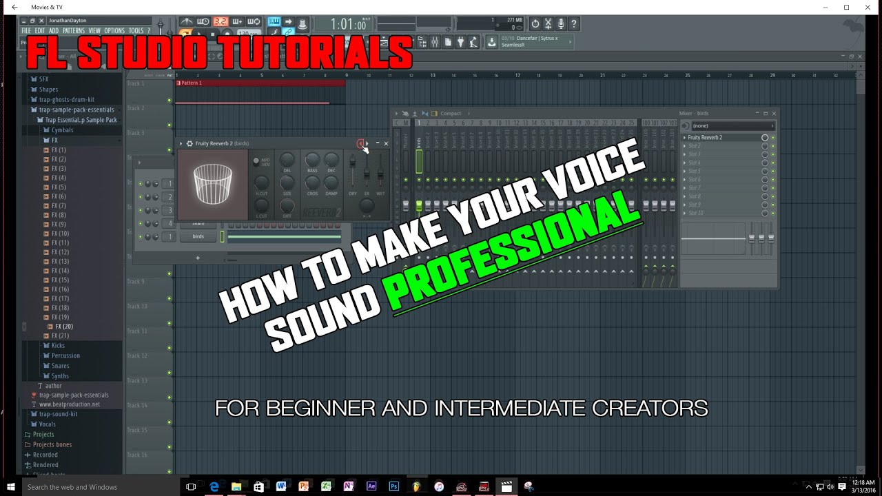 [2016] How to make your voice sound professional in FL Studio 12 (Novice  and Intermediate)