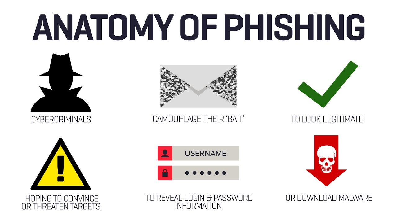 what are phishing scams
