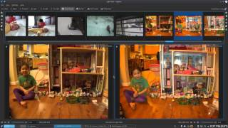 Photography Post-Processing on Linux with Digikam and RawTherapee - Jan  2016 Update