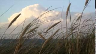 LMMS 3 le vent
