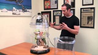 Biobubble Reptile Habitat Kits & Enclosures - Amazing 360 Degree View of Your Pet!