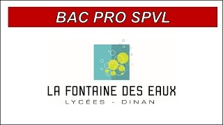 BAC PRO SPVL - Services de Proximité et Vie Locale - Lycée Fontaine des eaux