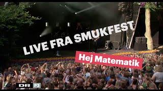 Hej Matematik feat. Jesper Binzer   Ik' Ordinær   Smukfest 2015