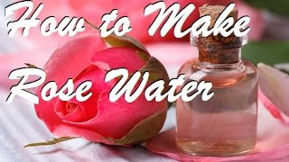How to Make the Highest Quality Rose Water EASY!
