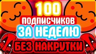 Как добавить много друзей (подписчиков) ВКонтакте без накрутки и легально [подписчиков нет]